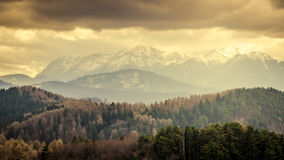 Winter landscape in the Carpathians Royalty Free Stock Images