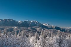 Winter landscape of carpathians mountains. Snowy fir-trees, blue and clear sky after sunrise. Romania, Poiana Brasov. Royalty Free Stock Photos