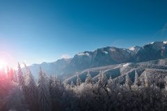 Winter landscape of carpathians mountains. Snowy fir-trees, blue and clear sky after sunrise. Romania, Poiana Brasov. Stock Images