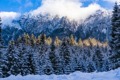 Winter landscape with Carpati Piatra Craiului mountain. Beautiful winter landscape with Carpati Piatra Craiului mountains in Romania stock photography