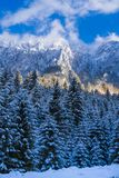 Winter landscape with Carpati Piatra Craiului mountain. Beautiful winter landscape with Carpati Piatra Craiului mountains in Romania royalty free stock images