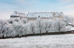 Winter landscape with castle Cerveny kamen, Slovakia Stock Image