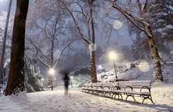 Winter landscape in Central Park. New York City. stock photos