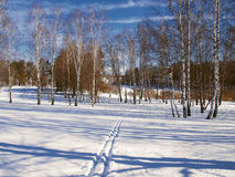 Winter landscape in central Russia Royalty Free Stock Photography