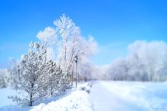 Winter landscape in Central Russia. Royalty Free Stock Image