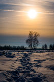 Winter landscape in Central Russia. Stock Photography