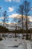 Winter landscape in Central Russia. Russian landscapes are diverse at any time of the year. In winter, the combination of forest, meadows and fields covered royalty free stock photo