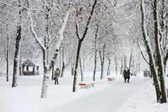 Winter landscape in the city Stock Photo