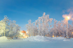 Winter landscape City Garden Royalty Free Stock Photography