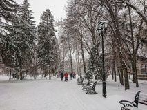 Winter landscape. City Park. Snow and snowfall. People walk.  Royalty Free Stock Photo