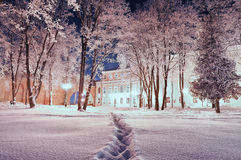 Winter landscape - city winter park covered with frosted trees and snow in the night Royalty Free Stock Image