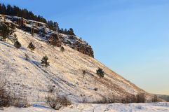 Winter landscape on a clear day. Dolerite rock. The Eastern Siberia. Winter landscape on a clear day. Dolerite rock on top of which grow the pine. The Eastern royalty free stock image