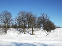 Winter landscape Royalty Free Stock Images
