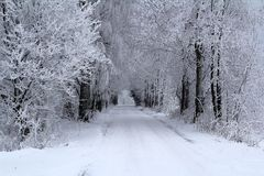 Winter landscape with cloudy sky. Winter landscape with  the road and birches Royalty Free Stock Images