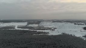 Winter landscape in cloudy weather. Forest and field in winter on video from the air. Aerial view. 4k drone flight stock footage