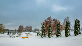 Winter landscape. cloudy weather. a park zone on the coast of the lake Stock Photos