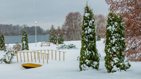 Winter landscape. cloudy weather. a park zone on the coast of the lake Royalty Free Stock Image