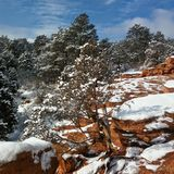 Winter Landscape. Colorado Stock Photos