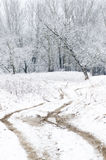 Winter landscape with country road Royalty Free Stock Photo