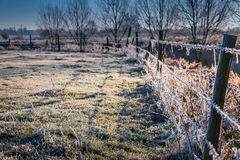 Winter landscape in the countryside. A frosty winter`s morning in the English countryside with the sun rising off the fields Stock Photos