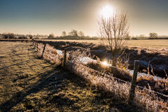 Winter landscape in the countryside. A frosty winter`s morning in the English countryside with the sun rising off the fields Stock Images