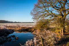 Winter landscape in the countryside. A frosty winter`s morning in the English countryside with the sun rising off the fields Stock Image