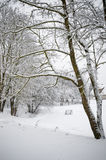 Winter landscape  in the countryside Royalty Free Stock Photography