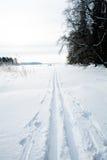 Skiing tracks in snow Royalty Free Stock Photos