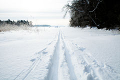 Skiing tracks in snow. Winter landscape with cross-country skiing tracks in snow on overcast day Stock Photo