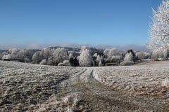 Winter landscape in Czech Republic. Snow Royalty Free Stock Photo