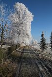 Winter landscape in Czech Republic. Snow Stock Photos