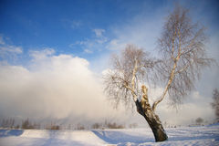 Winter landscape with dark clouds coming over sky Royalty Free Stock Images