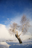 Winter landscape with dark clouds coming over sky Royalty Free Stock Photo