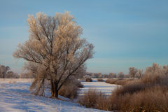 Winter landscape, dawn over the river Stock Photo