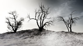 Winter Landscape With Dead Trees. On a snow covered hill with clouds in the sky Royalty Free Stock Photo