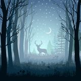 Winter landscape with deer in the forest at night background Royalty Free Stock Photo