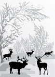 Winter landscape with deers Stock Images