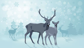 Winter Landscape with Deers Stock Photos