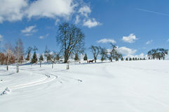 Winter landscape with a distant sleigh Stock Photography