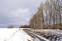 Winter landscape with ditch trench near forest Stock Photo