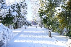 Winter landscape of the Dnipro city , covered with snow and hoarityfrost.   View of park in the Monastery Island. Stock Photo