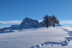 Winter landscape in the Dolomites mountain Stock Image