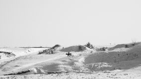 Winter landscape with dried plants, horse and rider. In the background Royalty Free Stock Image