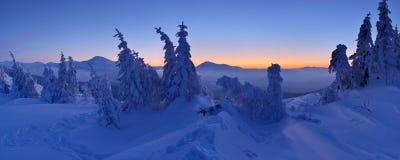 Winter landscape at dusk Royalty Free Stock Photo