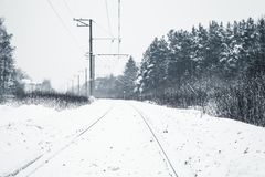 Winter landscape with an empty railway. Winter landscape with an empty rural railway going through the forest royalty free stock photo