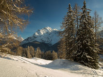Winter landscape in the Engadine Royalty Free Stock Photography