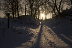 Winter landscape at evening. Forest track at sundown Royalty Free Stock Photo
