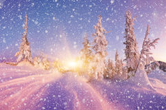 Winter landscape in the evening Stock Photo