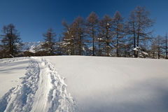 Winter landscape explored by ski touring Royalty Free Stock Photos