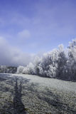Winter landscape. Fairytale winter landscape in the Czech Central Mountains Royalty Free Stock Image